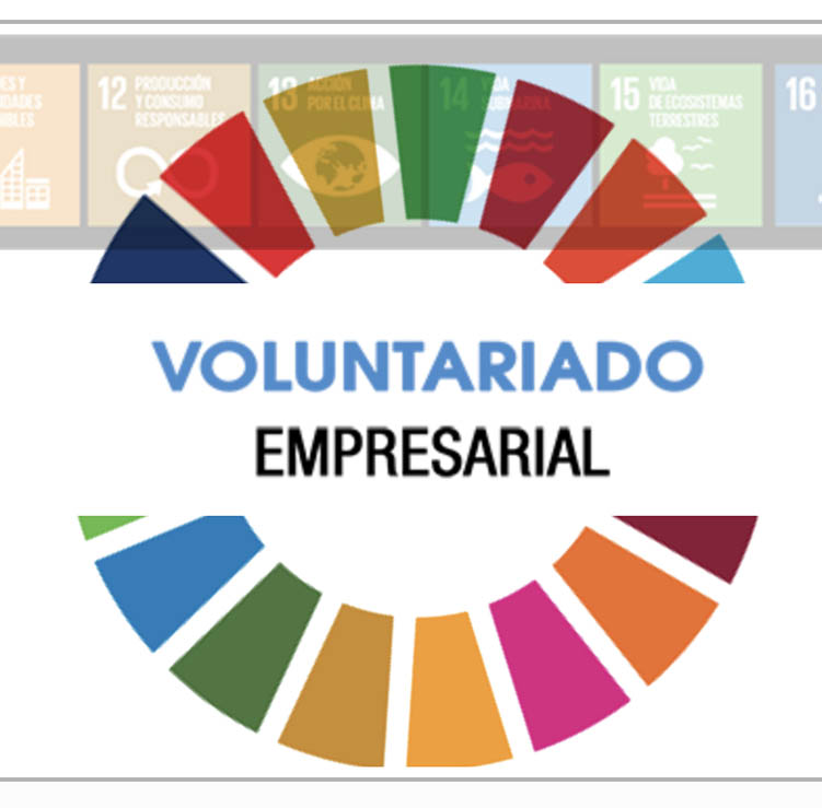 IC-VOLUNTARIADO EMPRESARIAL